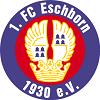 1_fc_eschborn